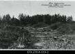 Talu rajamine Laiksaare metsa asunduses. 1920 - EFA