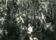 Betti Alver Pühastes aug. 1949. a. - KM EKLA