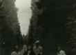 [Minni Nurme], Betti Alver, tundmatu ja Mart Lepik Valgemetsas okt. 1956 - KM EKLA