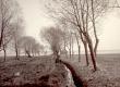 K. E. Sööt Ropka mõisa lähedal Emajõe ääres, kevad 1903 - KM EKLA