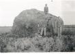 Kivimürakas W. Grünthal-Ridala suvila juures. K. E. Sööt ja W. Grünthal-Ridala kahe pojaga. 16. VII 1939 - KM EKLA