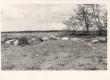[Bornhöhe-Brunberg, Ed.] Prunni talu Paide raj. Valasti külas, kus elasid Bornhöhe esivanemad. Järel ainult rohtu kasvanud kühm. - KM EKLA