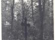 Jakob Tammega seotud paigad: Rannu surnuaed (A. Tamme matusepaik) - KM EKLA