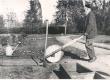 Ernst Peterson-Särgava aiatööl Pirita Kosel 1933. a. - KM EKLA