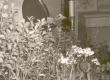 """Ernst Peterson-Särgava matus 16. IV 1958 - EKP Haridus- ja Kultuuriosak. juhat. Inti kõnelemas """"Estonia"""" kontserdisaalis.  - KM EKLA"""