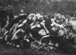 August Kitzbergi matus 1927 - KM EKLA