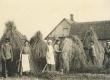Artur Adsoni sugulaste Zirk'ude pere viljakoristusel Antslas Lembitu talus 24.07.1936 - KM EKLA
