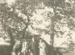 Kitzbergid jt Saaremaal Loodel 21.06.1931 - KM EKLA