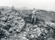 Friedebert Tuglas Iru linnusel, aug. 1940 - KM EKLA