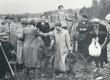 Erastvere metsas 28. V 1939.  vasakul F. Tuglas. keskel E. Tuglas - KM EKLA