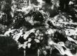 Betti Alveri kalm Tartu Raadi kalmistul 23. juunil 1989. a. - KM EKLA