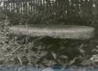 K. E. Sööt'i sünnikohas Luunjas Lohkva külas Tuki talus säilinud endisest veskist kivi aialauana. 1965. a. - KM EKLA