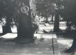 Debora Vaarandi Tuusula surnuaias Aleksis Kivi haual 1982 - KM EKLA