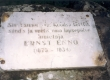 Mälestuskivi Ernst Enno sünnikohas Valgutas - KM EKLA