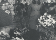 """Ella Enno põrmu muldasängitamiselt 2. nov. 1974. a. Haapsalu I Kk. õpilane Aili Laks esitab E. Enno luuletuse """"Kui suri lill"""" - KM EKLA"""