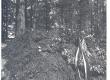 Vilde, Eduard, haud Tallinna Metsakalmistul - KM EKLA