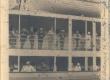 Hindrey, Karl August Antwerpenis enne sõitu Belgia-Kongosse. Laeva külgvaatest osa. Ül. Reas 3. vas. Hindrey, Karl August - KM EKLA