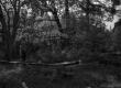 Hendrik Adamsoni viimase kodupaiga ase 1961. a. - KM EKLA
