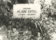 Aliide Erteli haud Puka kalmistul 1970. a. - KM EKLA