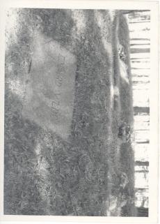 Eduard Vilde, haud Metsakalmistul