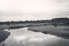 Ao jõgi, 1949