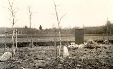 Kreutzwaldi mälestustahvel Ristimetsa kohal, arvatav. Lauluisa sünnikoht Jõeperes