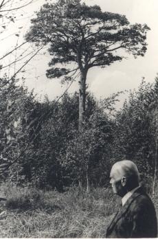 Kurvitsa talu pedajas 1937 (K. E. Sööt'iga esiplaanil?)