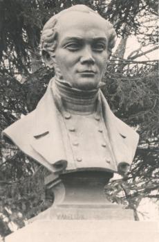 F. r Faehlmanni büst